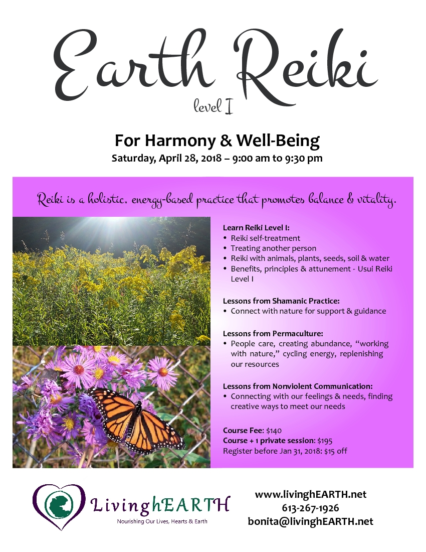 Earth Reiki course flyer