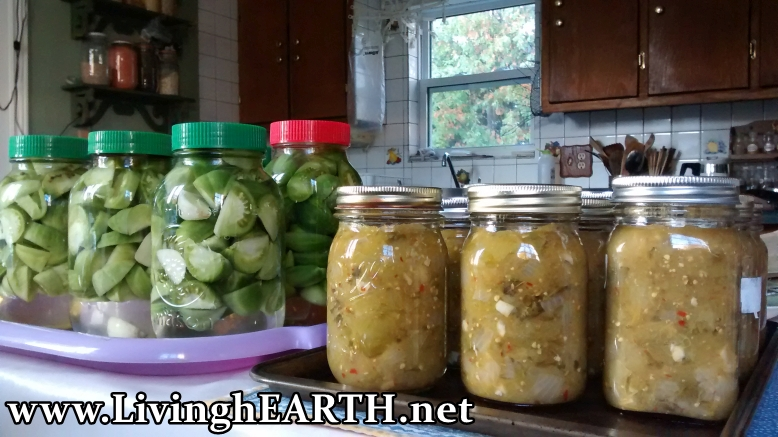 green tomato pickles and salsa