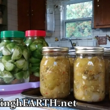 green tomato salsa and lacto-fermented green tomato pickles