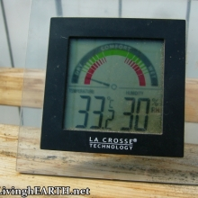 33.2C in the greenhouse, while there's snow outside