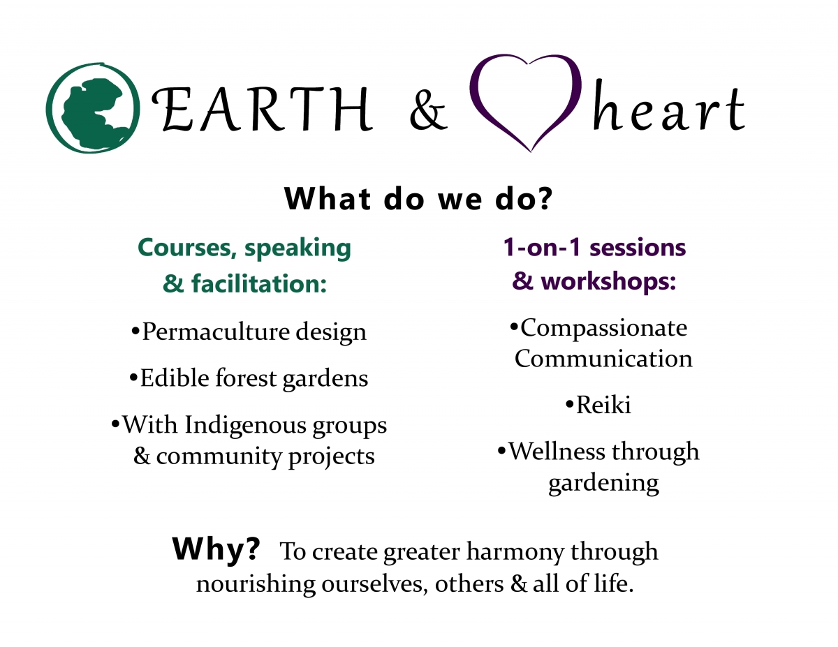 Livinghearth, what we do